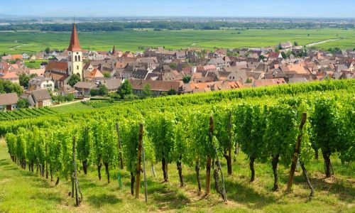 investissement immobilier alsace