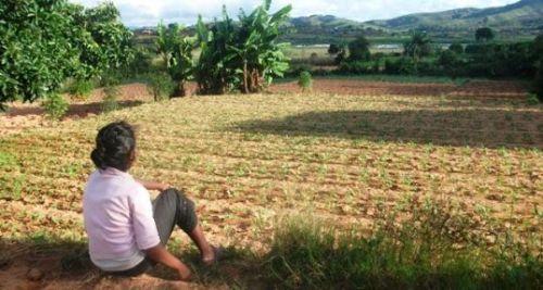 À Madagascar pour l'agriculture